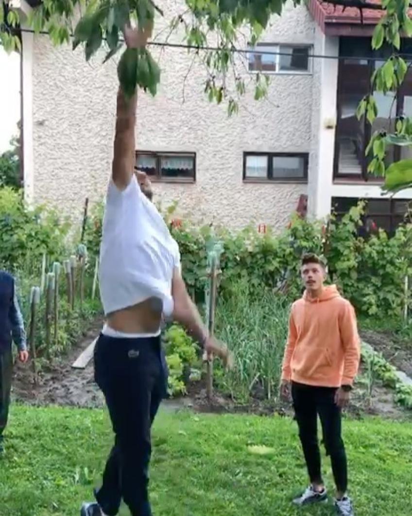novak-djokovic-takes-part-in-a-cherry-picking-challenge-in-his-backyard